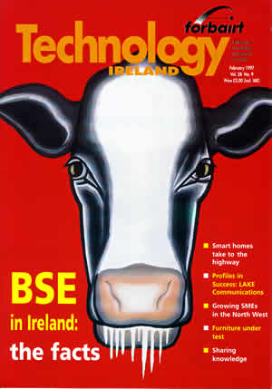 Fig 4: Cover illustration for Technology Ireland, February 1997, edited by Mary Mulvihill. The image was a response to an article by that was about the issue of BSE in Ireland.